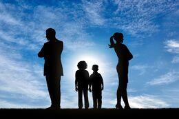 Romaner om familiehemmeligheder